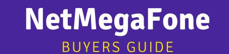 NetMegaFone